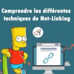 Comprendre les différentes techniques de Net-Linking