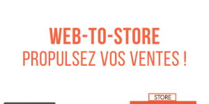 web to store definition